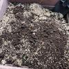 生ゴミ分解処理装置にボカシ肥料を散布してみた