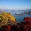 2020/11/15 竜王山