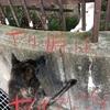 8月の反省点と9月への意気込みの巻〜イキゴミ❓ゴミナノ❓生ゴミハ水曜日ダョ⁉️(・・?)