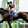 宝塚記念が唯一のG1となった馬がいかに多いことか。