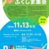 11月13日は「国と東電は責任を果たせ!ふくしま集会」へ!