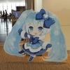 新千歳空港→雪まつり会場 (さっぽろ雪まつり2012)