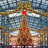 TDR公式HPでクリスマスツリーの撮り方が紹介!