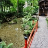 真姿の池湧水群(東京都国分寺)