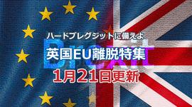 「EU離脱に不透明がある中、利下げ観測高まる」ハードブレグジットに備えよ!英国EU離脱特集