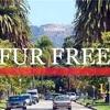 ファッション都市ロサンゼルスで毛皮の販売が禁止に