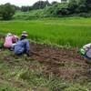 今日は大豆オーナー制の大豆畑に8人で定植&種まき作業しました!感謝です。