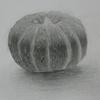 かぼちゃのデッサン