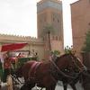 モロッコ1人旅行記 マラケシュ散策 あまりに疲れたので観光用『馬車』に乗ってみました~