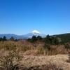 十国峠レストハウス 富士山を見る絶景スポット!ドライブの目的地に!