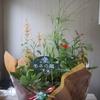 母の日にお届け。北川村の返礼品