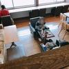 【Cats Cafe nuko-mahi】大分の猫カフェ「ぬこマヒ」が最高すぎた件!!!とろけた。