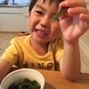 ケンカして鼻の真下を擦りむいた息子5才-ケガなのに笑いポテンシャルが高かった話