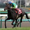 【データ】第59回宝塚記念(2018)過去5年の勝ち馬の共通点~穴候補いっぱいいるよ~