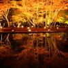 暗闇に浮かび上がる紅葉(その1) ― 曽木公園の逆さ紅葉 ―