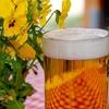 ビールでダイエット?ビールに含まれるホップで体脂肪が減る
