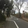 二ツ塚峠から山道へ