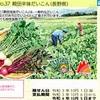 第417回レインボーくじ ~日本の伝統野菜シリーズ No.37 親田辛味だいこん
