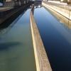[河川][歴史] 古利根川の追跡(4)−8 旧利根川跡を流れる葛西、北側用水路の実態