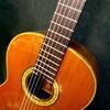 習い事(英会話スクール、50の手習いのギターの件)のリブートがやっかいだった