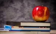 代ゼミ「英語脳トレーニングジム」が多読コンテンツを拡充