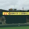 阪神タイガース宜野座キャンプリポート①