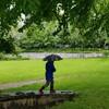 雨の日のさんぽ&コロナ第2波に備えてヘアカット