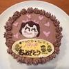 ホールケーキを美味しく簡単に作る方法