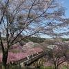 2018.03.31 常陸風土記の丘~柏原池公園