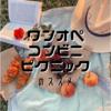 ワンオペコンビニピクニックのススメ【毎週末行ってる!】