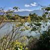 上ノ池(和歌山県紀の川)