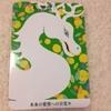 【今日の龍神カードメッセージ/6.翠龍】