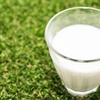 牛乳を水っぽく感じるのはなぜ?