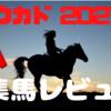 ワラウカド2021年度募集馬全6頭の評価&申し込み馬予定馬を晒してみた