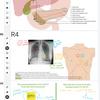 バーチャル解剖学教育のためのGoogle Jamboard