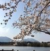 ☆春を感じられた日☆