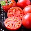 リコピン と トマト の一日!