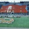 Стадион моей мечты(我が夢のスタジアム)