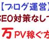 【ブログ運営】SEO対策なしで月1万PVを稼ぐ方法