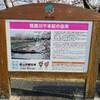 笹原川千本桜。