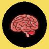 脳動静脈奇形とは【自己解釈】