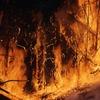 豪州山火事が地球温暖化を増悪させる?