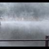 【四国&九州(26)】大分県にある由布院温泉を観光【金鱗湖・ドクターフィッシュ】
