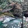 観光で大人気!徳島にある祖谷のかずら橋ってどんなとこ?実際に行って体感してきた!