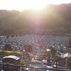 霊園風景 その45 「‥この年の 師走の光景」