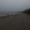 シアトルの近くの島でサーモン釣り、20分間ぐらいで4回バラすも、最後は成功で満足。