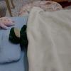 💏ぬいぐるみ病院💏
