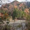 京都の秘境・芦生(あしう)の森 原生林(1) 芦生熊野権現神社 古代の道・鯖街道
