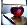 リンゴの疑問文