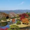 京都紅葉狩り旅行  3